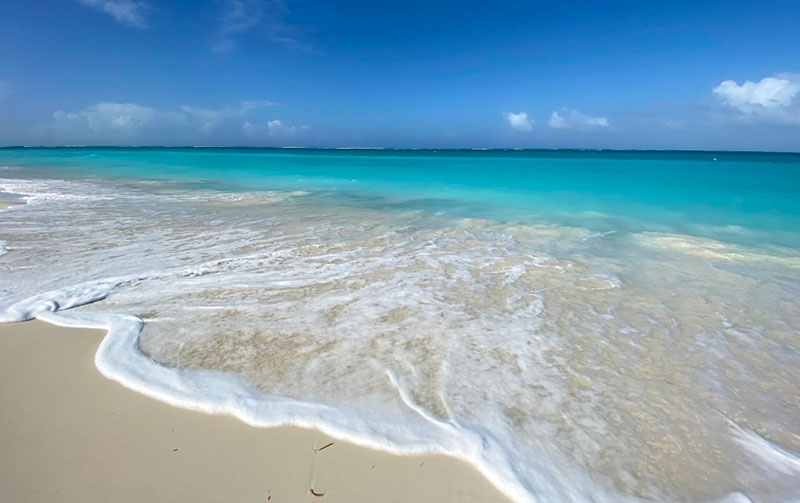The Best Beaches in Turks and Caicos